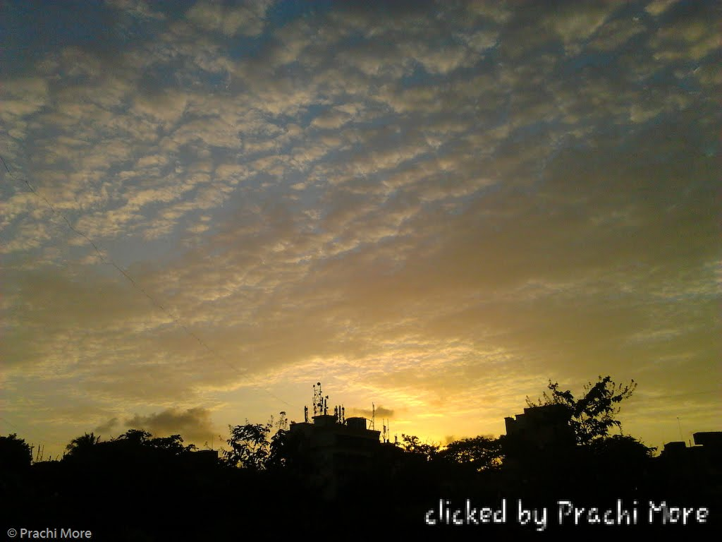 Prachi More: Sunset, 2012