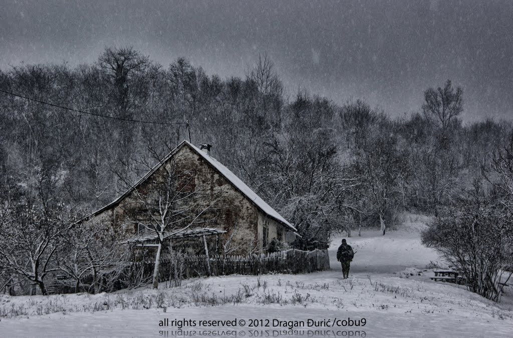 Dragan Đurić (cobu9): Winter, 2012